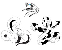 Snake tattoo. Three tattoos in the form of a snake Royalty Free Stock Image