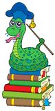Snake teacher on pile of books Royalty Free Stock Image