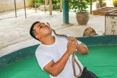 Snake trainer with king cobra Royalty Free Stock Photography
