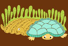 Snake and turtle royalty free stock photography
