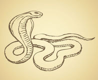 Snake. Vector drawing Royalty Free Stock Image