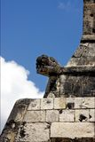 Snake in wall  mexico Royalty Free Stock Images