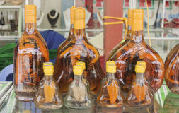 Snake wine Stock Image