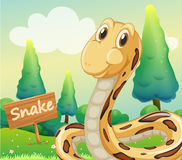 A snake beside a wooden signage Stock Image
