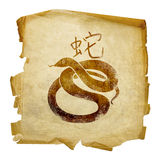 Snake Zodiac icon Royalty Free Stock Photography