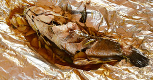 Snakehead fish cook royalty free stock photo