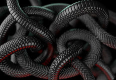 Snakes Abstract Background Royalty Free Stock Photos