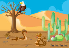 Snakes and eagle in the desert. Illustration Stock Photos