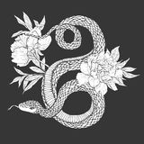 Snakes and flowers. Tattoo art, coloring books. Stock Photography