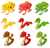 Snakes and frogs in three colors royalty free illustration
