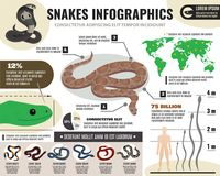 Snakes Reptiles Infographics Royalty Free Stock Image