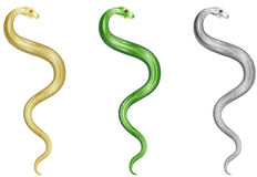 Snakes Set Stock Photo