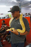 Snakes. Snake fans gathered at a mall in monthly meetings in Karanganyar, Central Java, Indonesia stock images