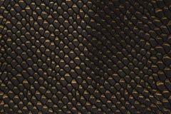 黑snakeskin样式纹理背景 库存照片