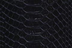 snakeskin的纹理 库存照片