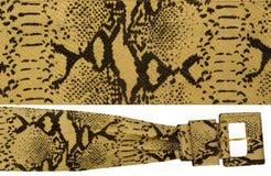 snakeskin пояса Стоковое Изображение RF