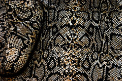 Snakeskin. Abstract of boot in snakeskin design digitally manipulated for strong color and contrast Royalty Free Stock Photo