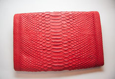 Snakeskin bag. Snakeskin leather bag with closeup texture Royalty Free Stock Image