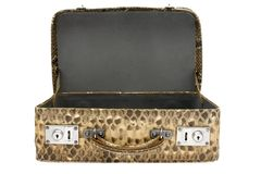 Snakeskin Bag w/ Path Royalty Free Stock Image