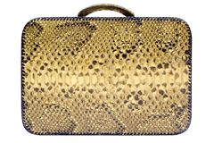 Snakeskin Bag w/ Path (Side View) Stock Photo