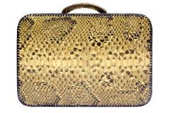 Snakeskin Bag w/ Path (Side View) stock photo