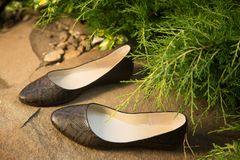 Snakeskin ballet flats, women's shoes on a rock. A Royalty Free Stock Photography