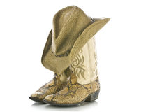 Snakeskin boots and hat isolated stock image