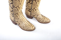 Snakeskin cowboy boots. Royalty Free Stock Images