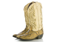 Snakeskin Cowboys Boots Stock Photos