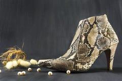 Snakeskin das sapatas com pérolas e pontos Fotografia de Stock Royalty Free