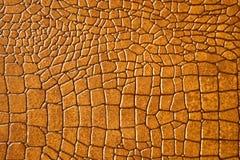 Snakeskin de Brown ou texture de crocodile Images libres de droits