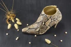 Snakeskin de los zapatos con las perlas y los puntos Fotos de archivo libres de regalías