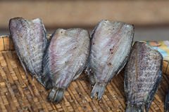 Snakeskin gourami dried fish Royalty Free Stock Images