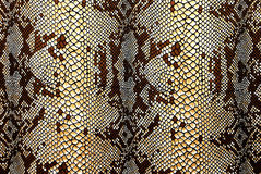 Snakeskin modelé par tissu Photographie stock