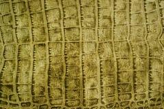 Snakeskin ou texture de crocodile Photographie stock libre de droits