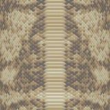 Snakeskin pattern. Snake skin pattern close up Royalty Free Stock Image