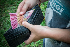 Snakeskin python leather wallet with money in male hands on green background. Tropical Bali island. Snakeskin python leather wallet with money in male hands on Royalty Free Stock Photo