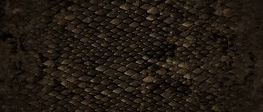 Snakeskin. Realistic looking snakeskin for fashion images background Royalty Free Stock Image