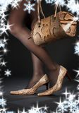 Snakeskin shoes and handbag Royalty Free Stock Photography