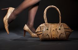 Snakeskin shoes and handbag. Long legs in snakeskin shoes with handbag over black Stock Photography