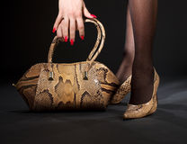 Snakeskin shoes and handbag. Long legs in snakeskin shoes with handbag over black Royalty Free Stock Image