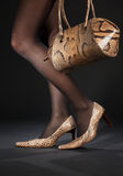 Snakeskin shoes and handbag Royalty Free Stock Photos