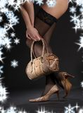 Snakeskin shoes, handbag and stockings Stock Photography
