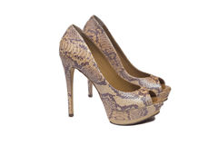 Snakeskin shoes. On a white background Royalty Free Stock Image