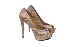 Snakeskin shoes Royalty Free Stock Image