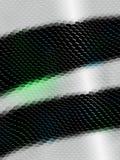Snakeskin texture Stock Image