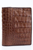 Snakeskin wallet Royalty Free Stock Photography