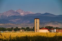 Snakt Piek in Colorado royalty-vrije stock afbeelding