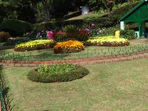 Awesome view botanical garden ooty,india. This snap is from botanical rose garden ooty, india. Awesome view of all flowers that you may love Royalty Free Stock Image