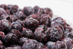 Snap-frozen blueberries. Macro view of snap-frozen blueberries thawing out Stock Image